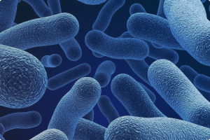 Безопасность работы с микроорганизмами III–IV групп патогенности